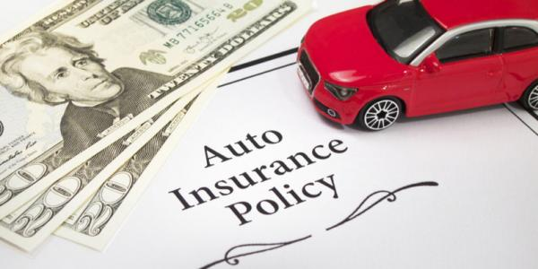Complete details about the insurance of the vehicles