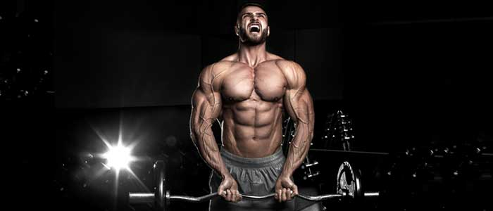 How to Get Correct Mass of Steroids