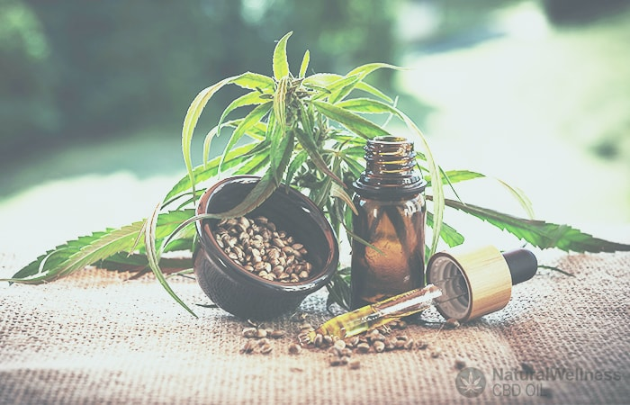 How to buy the best CBD oil online? – Tips